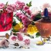Descubre las notas de un perfume