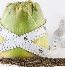 Ayudas nutricionales para controlar el peso