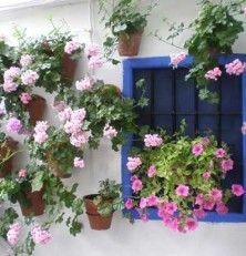 Los patios de Córdoba, una explosión de color