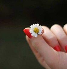 Cuida tus manos y embellece tus uñas